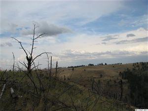 Photo of Sec34 Twp 10 Range 42 Allen Land, Pomeroy, WA 99347 (MLS # 125974)