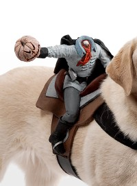 Dog Rider Headless Horseman