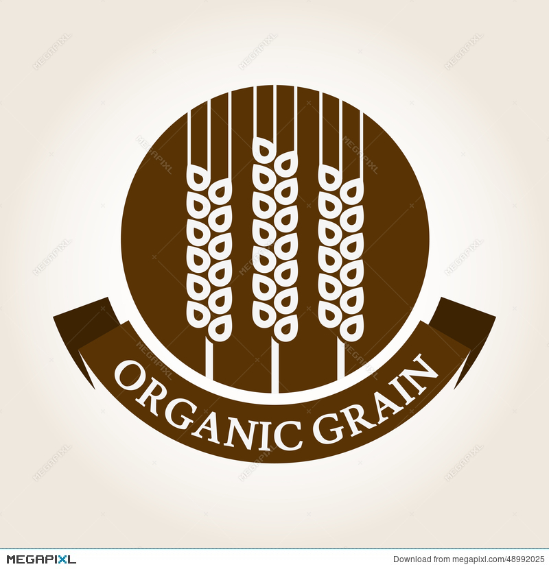Vintage Style Wheat Label Vector Logo Design Template Organic - wheat template