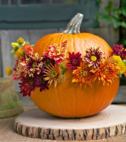 Fall Outdoor Decorations Wallpaper 6 Blooming Pumpkin Displays Midwest Living