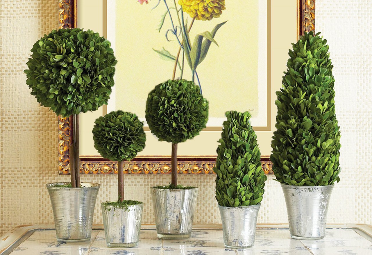 Lifelike Plants Wayfair Quick Checkout Easy Sharing Our Ipad And Iphone