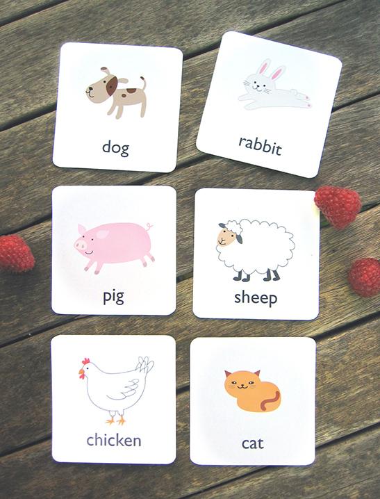 Printable Animal Flash Cards - Mr Printables
