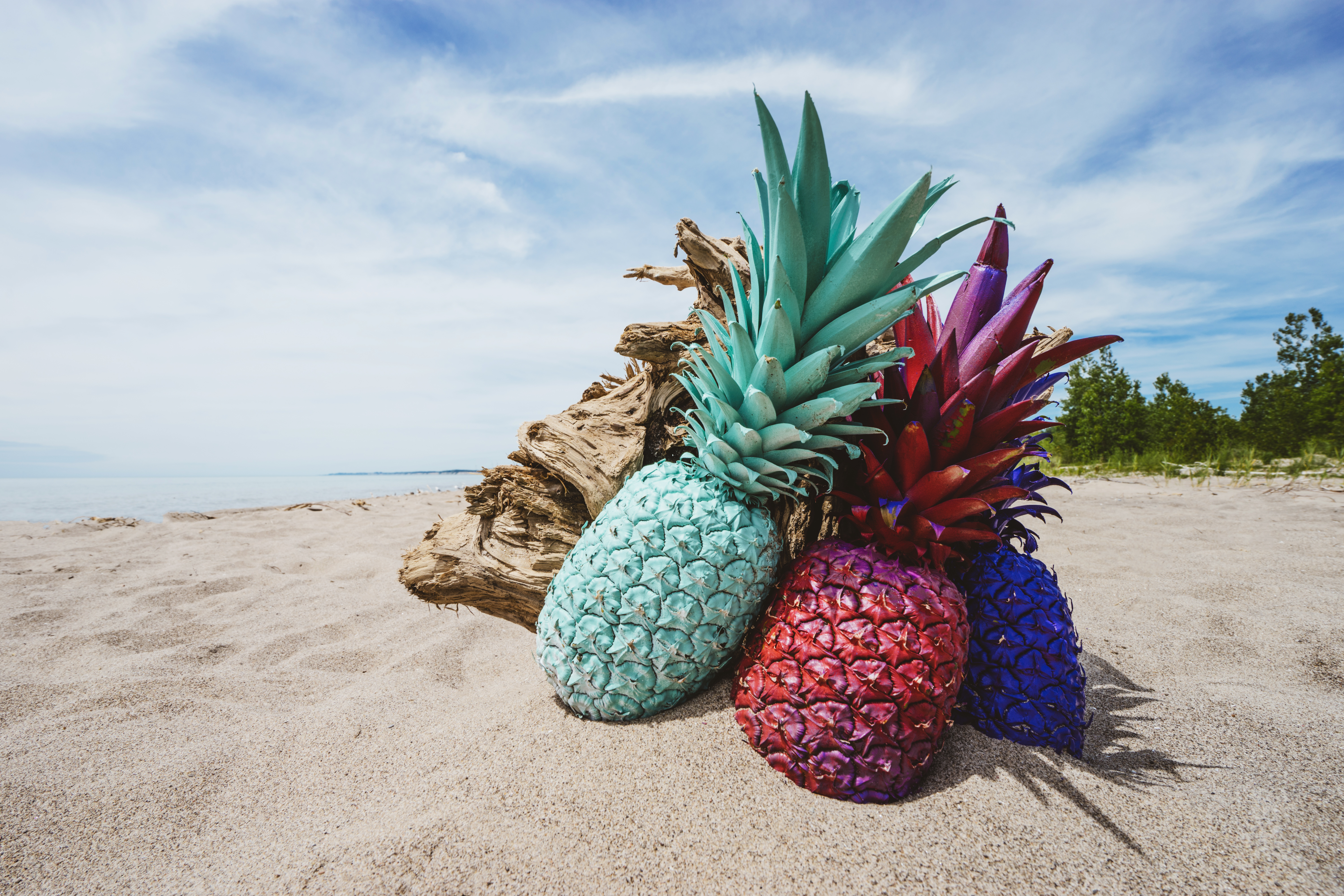 Cute Camera Wallpaper Three Assorted Color Pineapples On Sand 183 Free Stock Photo