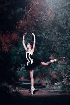 Black And White Flower Wallpaper Free Stock Photo Of Ballerina Ballet Ballet Dancer