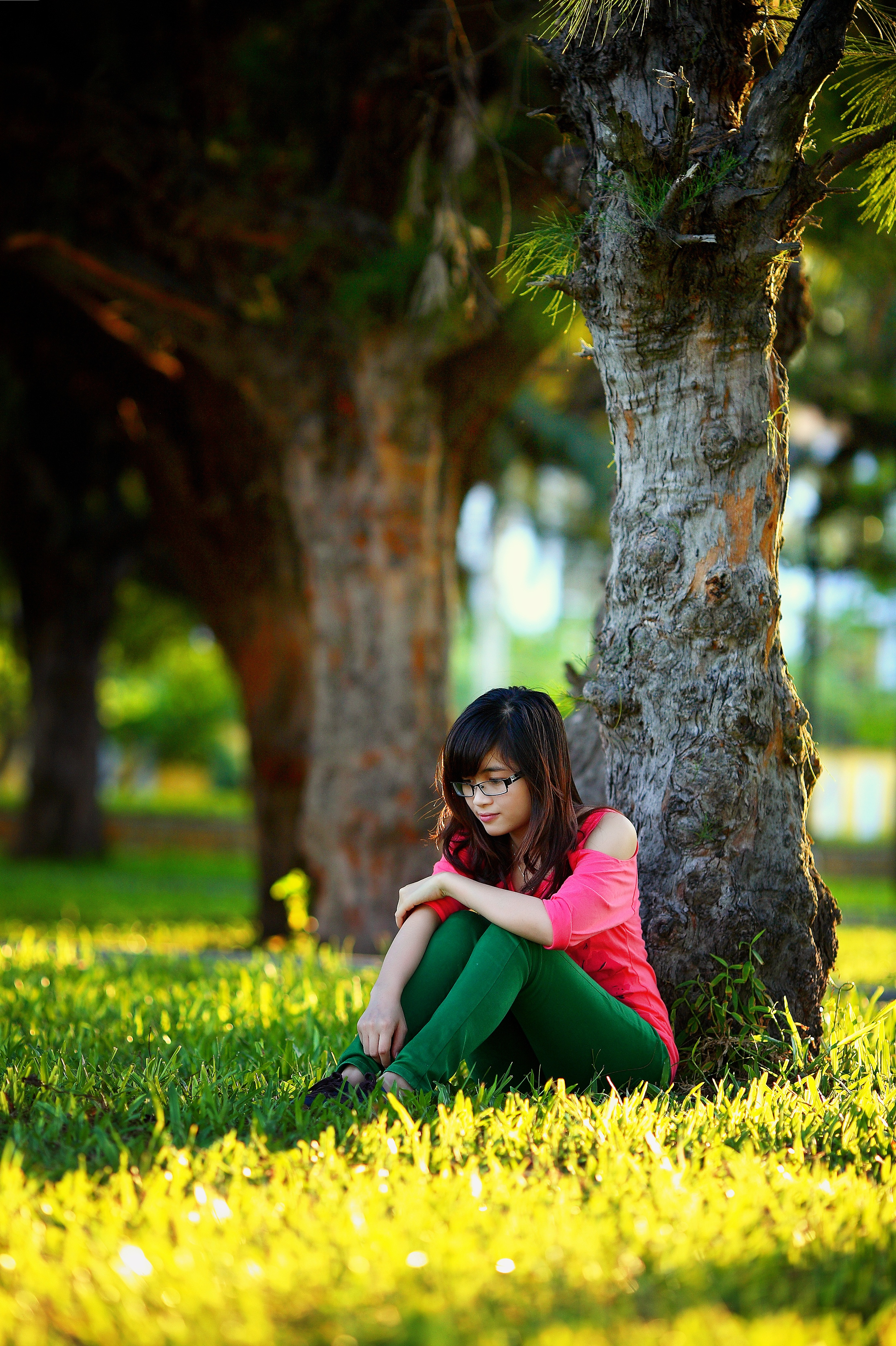 Girls And Trucks Wallpaper 2 Woman Sitting In The Different Bench Chair Near Tree In