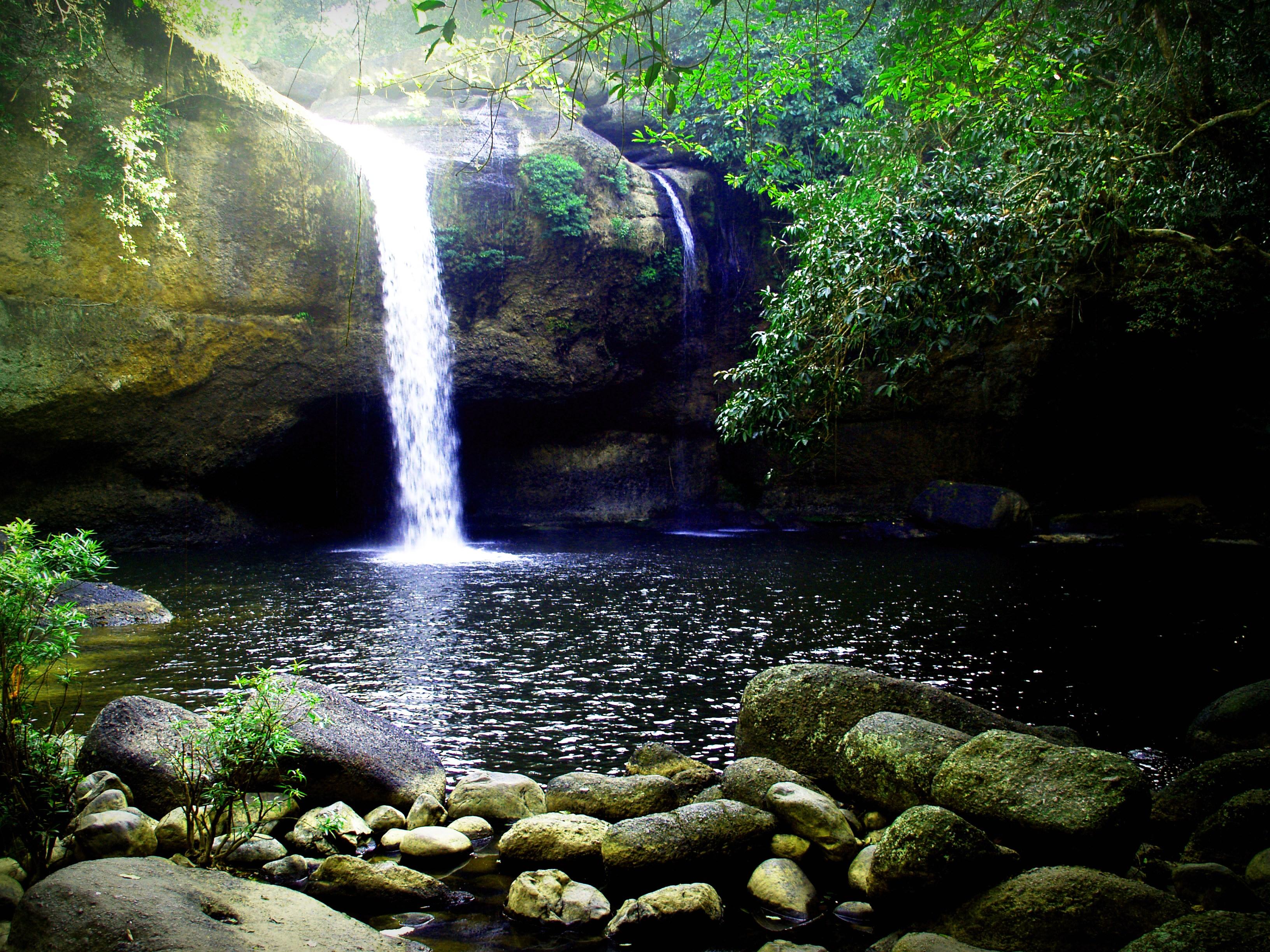 Waterfalls Desktop Wallpaper Forest Falls Waterfall Images 183 Pexels 183 Free Stock Photos