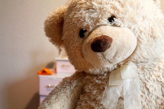 Cute Animal Wallpapers Free Download White Teddy Bear Reading Book 183 Free Stock Photo