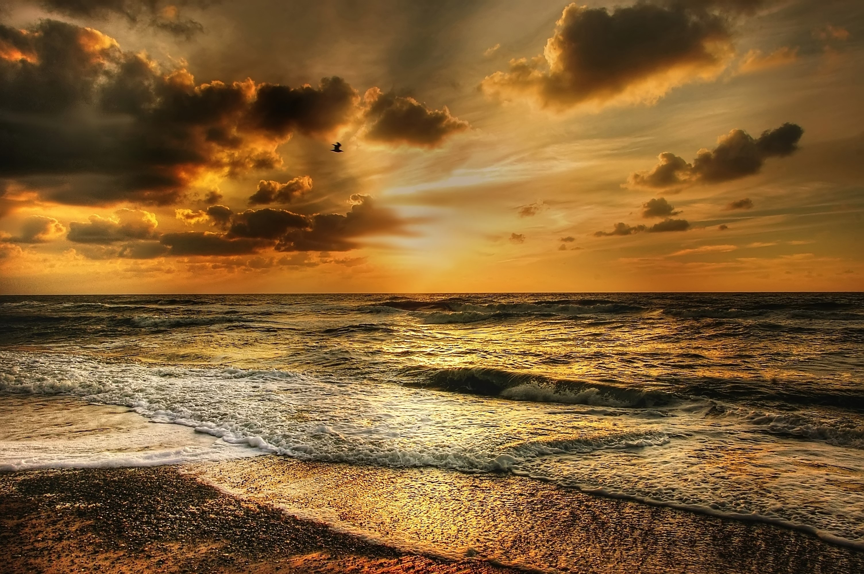 Nature Hd Wallpapers For Iphone Seashore During Sunset 183 Free Stock Photo