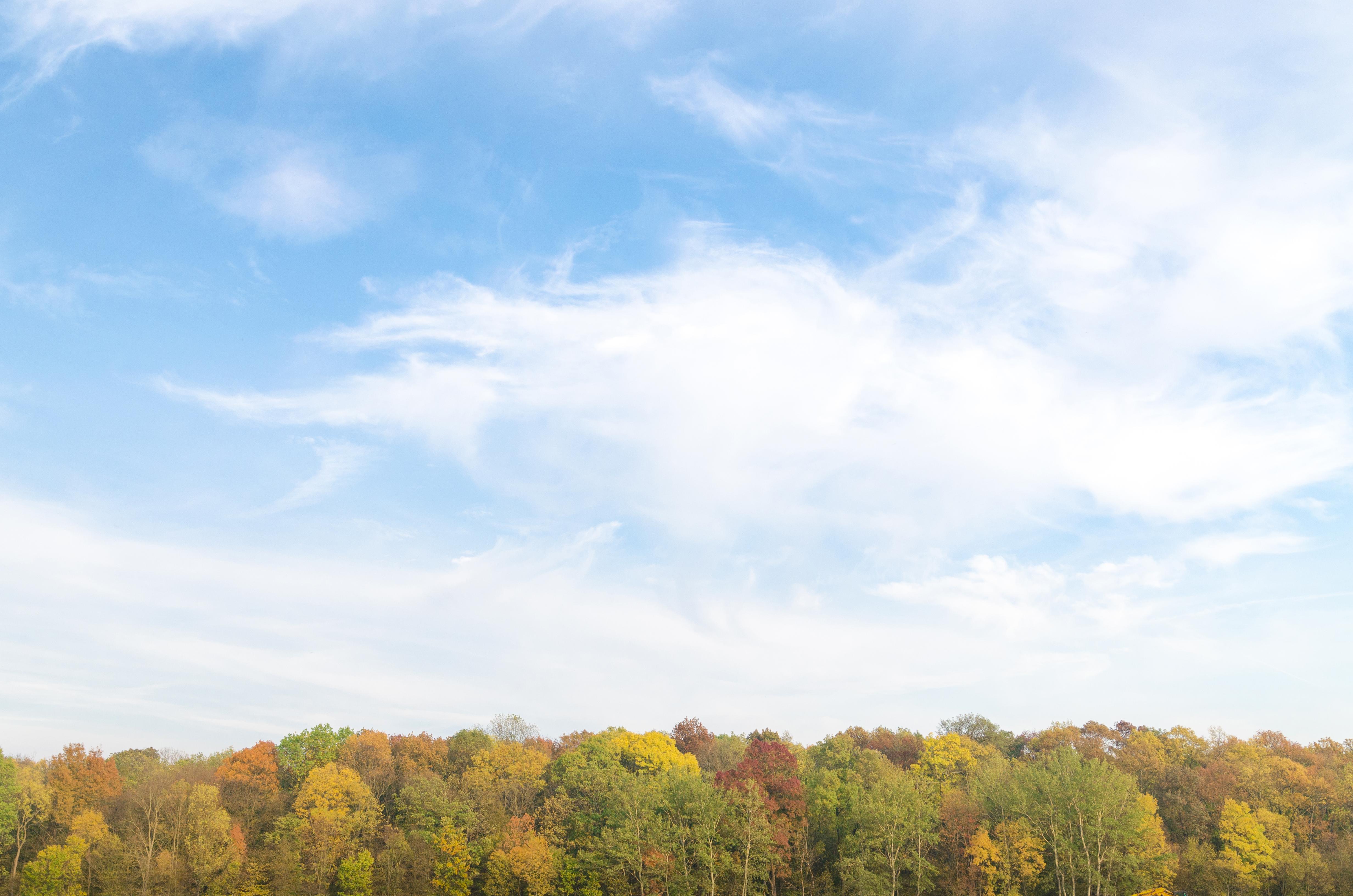 Panoramic Wallpaper Fall 1000 Engaging Sky Background Photos 183 Pexels 183 Free Stock