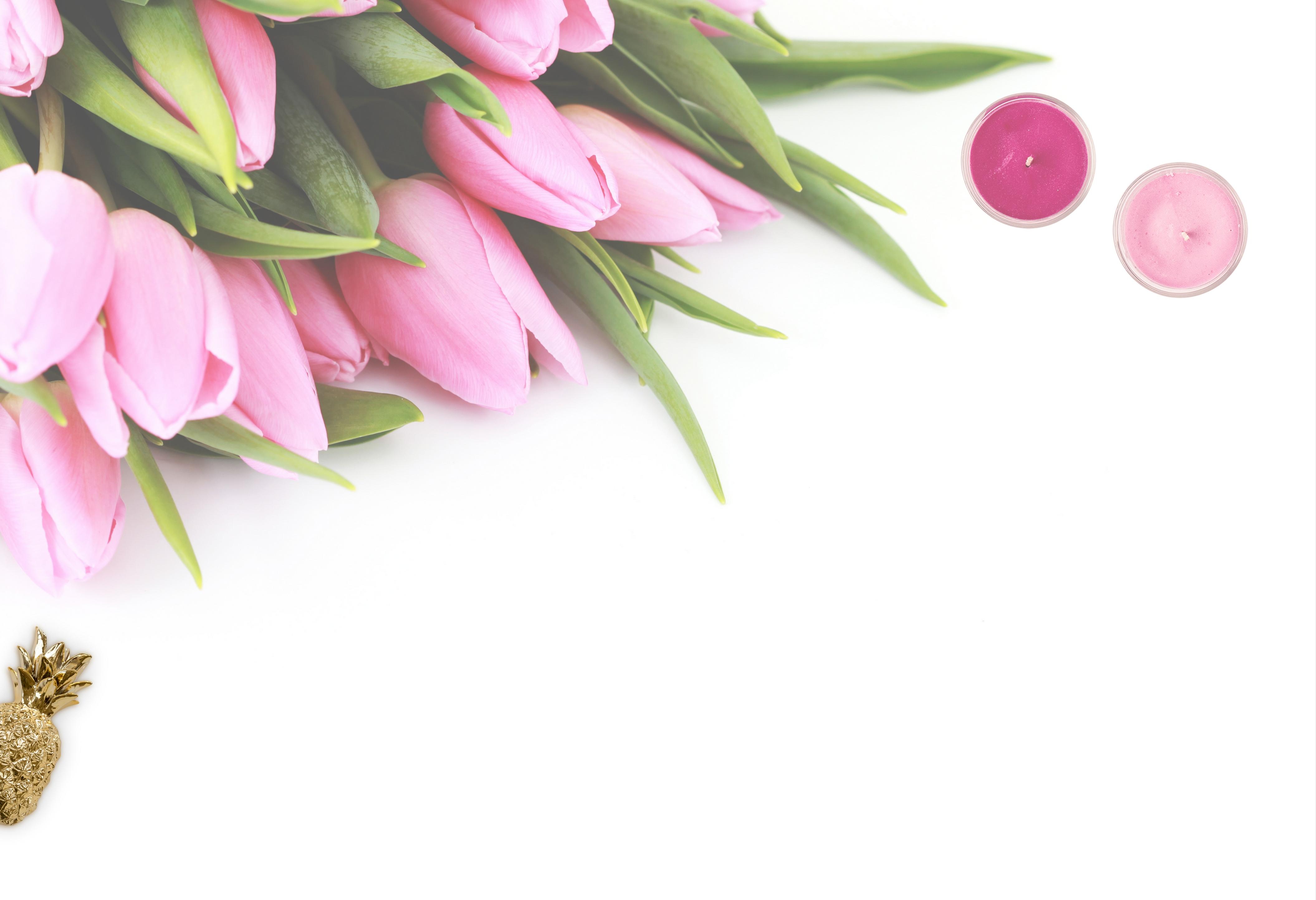 Peonies Wallpaper Iphone 6 250 Interesting Flatlay Photos 183 Pexels 183 Free Stock Photos