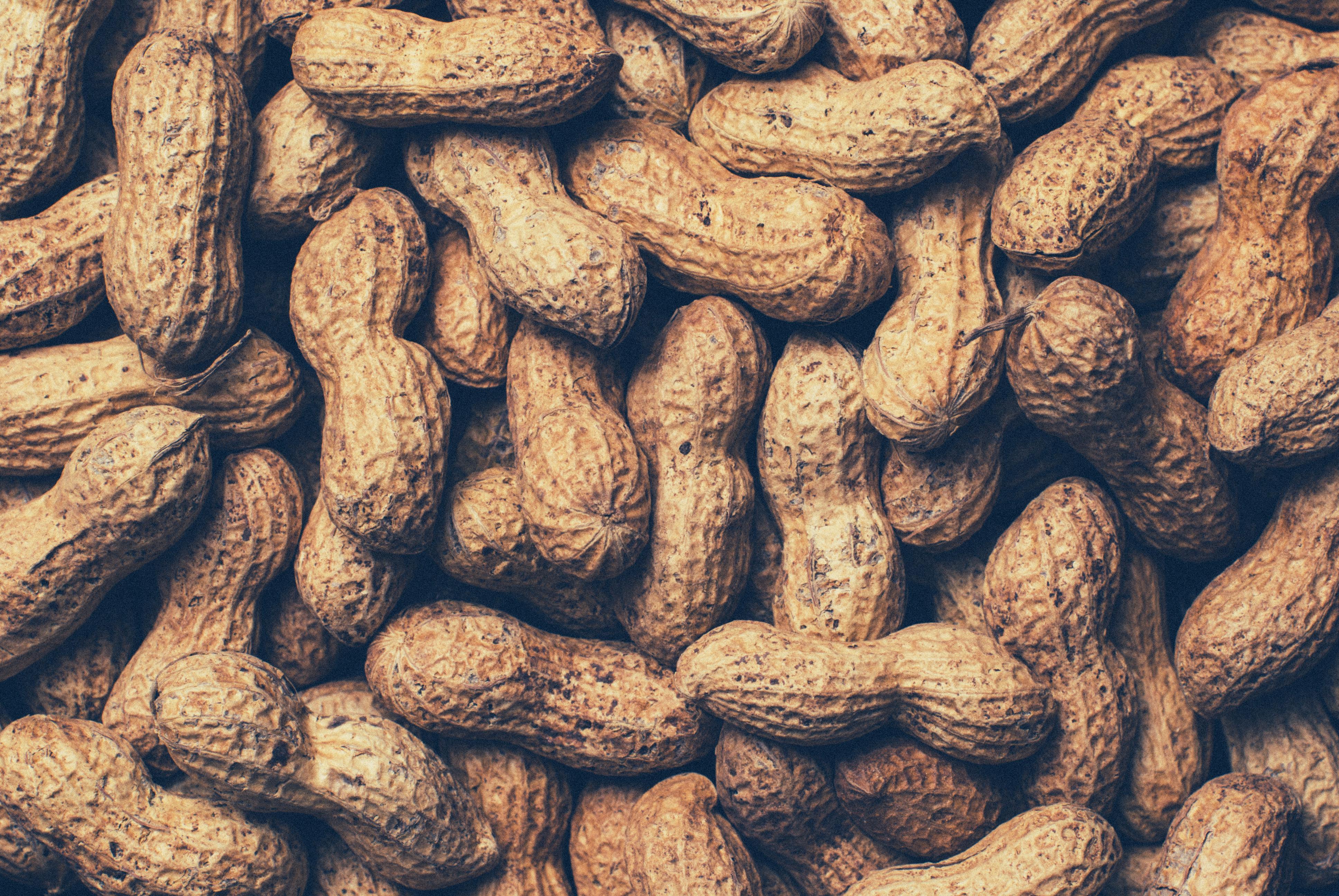 Iphone Lock Screen Wallpaper Hd Selective Focus Photograph Of Plate Of Peanuts 183 Free