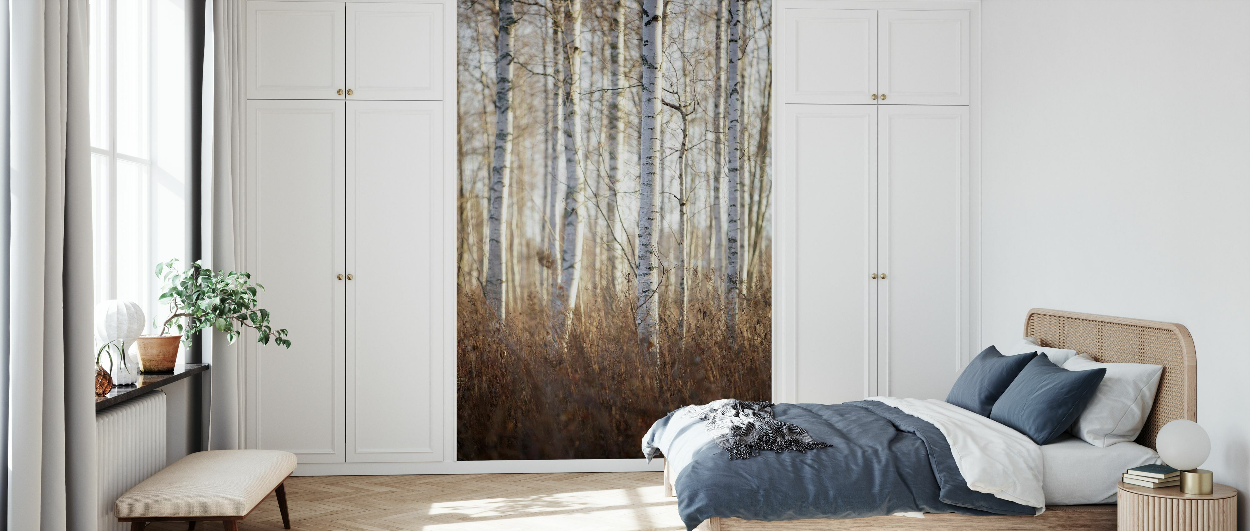 Birch Forest In Dalarna Sweden Europe Beliebte Fototapete Photowall