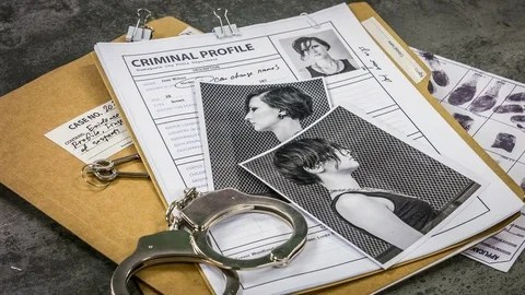 Criminal case, photos and documents of the girl hacker Detective - criminal profile
