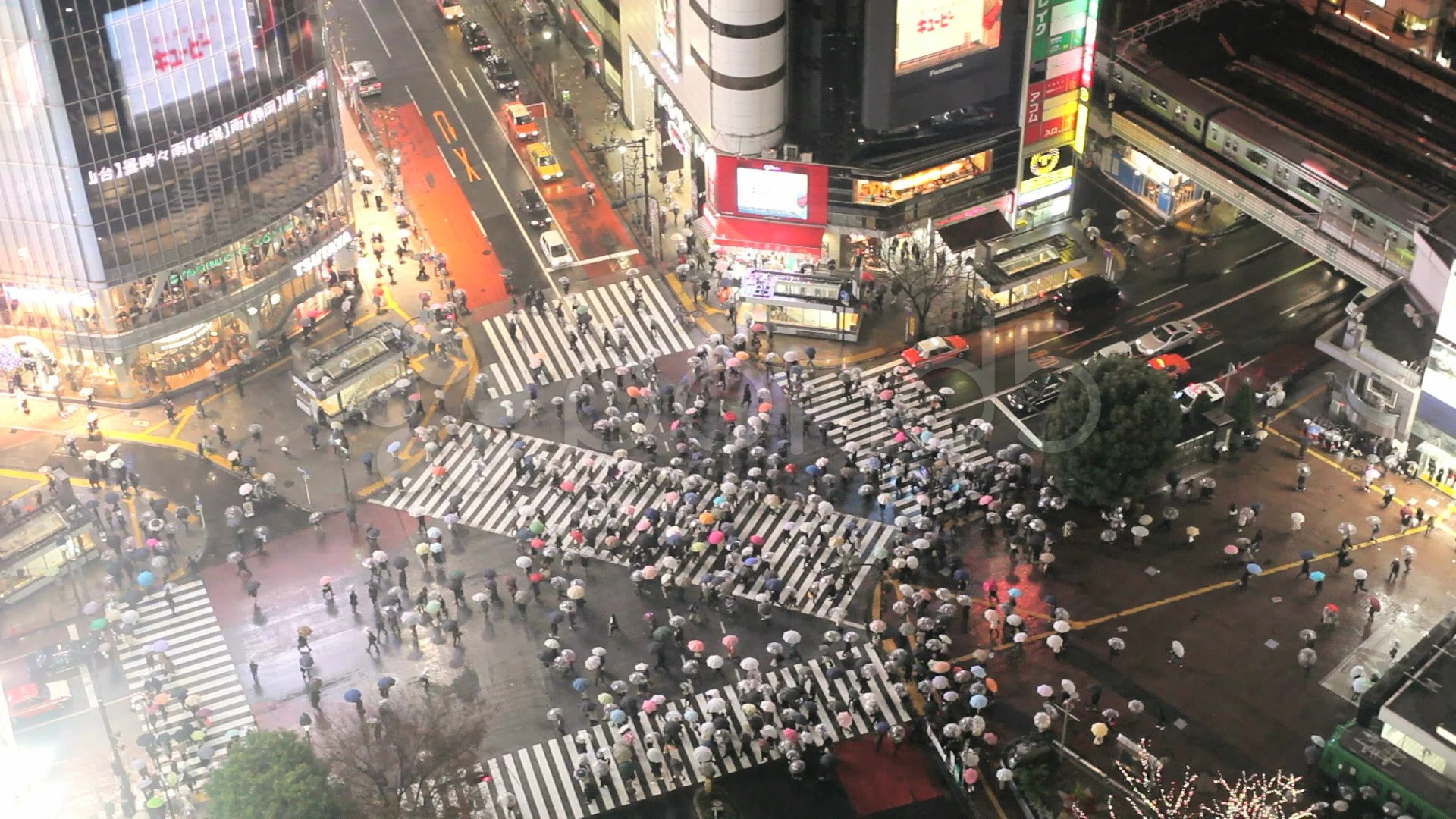 3d Shark Wallpaper Video Japan Tokyo Shibuya Shibuya Crossing At Night