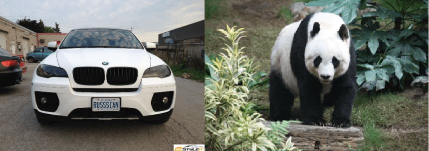 desiigner panda review