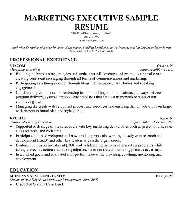 sample resume college admissions director