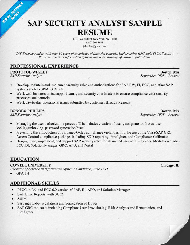 data security analyst resume sap security analyst resume 2 best