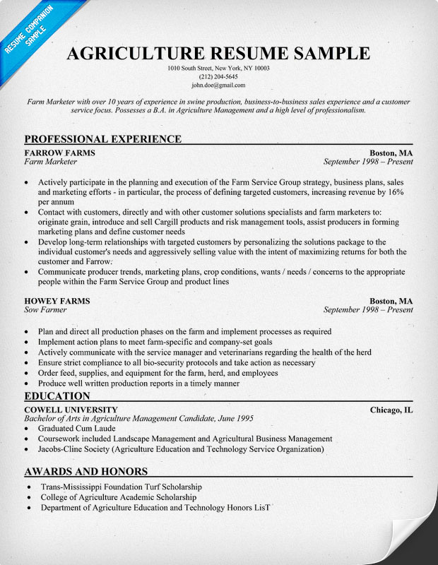 "Medical Doctor Resume Example Sample Search Results For ""sample Layout Of Resume"" – Calendar 2015"