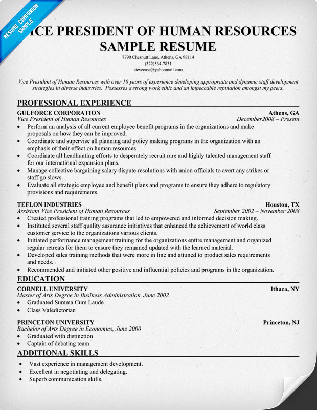 Dorable Vice President Sales Resume Templates Image - Professional - vice president of sales resume