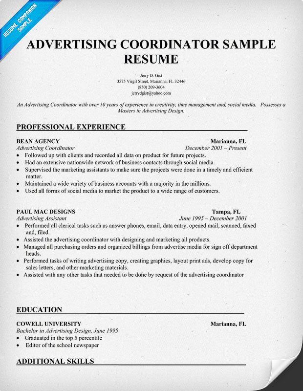 advertising coordinator resume sle resumes top 8