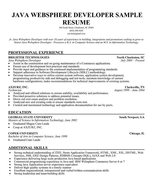 struts sample resume