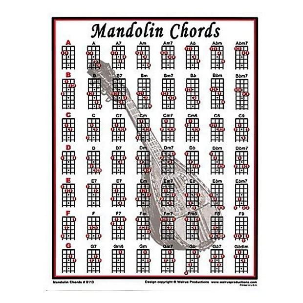 Walrus Productions Mini Laminated Mandolin Chord Chart Reverb - mandolin chord chart