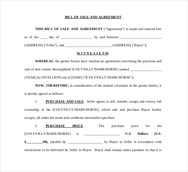 Sample Horse Bill of Sale Forms - 7+ Free Documents in PDF, Word - Bill Of Sale Agreement