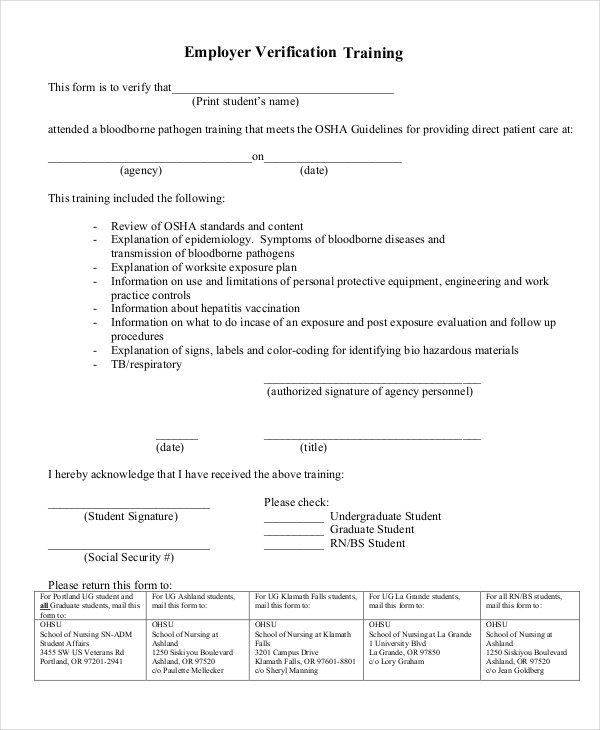 Sample Employer Verification Form - 9+ Free Documents in PDF - income verification form