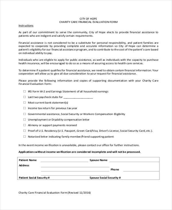 8+ Financial Evaluation Form Samples - Free Sample, Example Format - charity evaluation