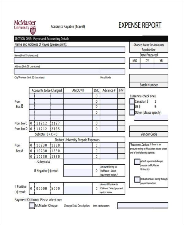 expense report form node2003-cvresumepaasprovider