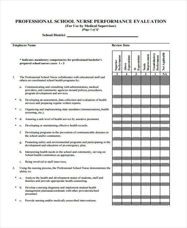 Example of a nurse employee evaluation form Term paper Example