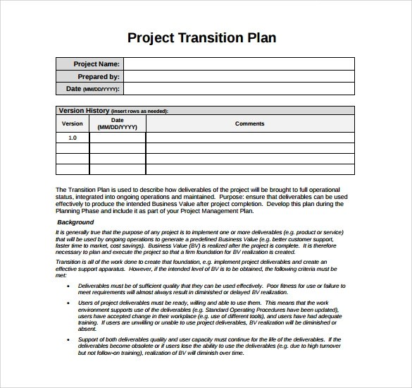 project business plan template - Delliberiberi - project plan template