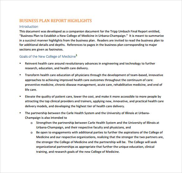 International Business Report Plan Template