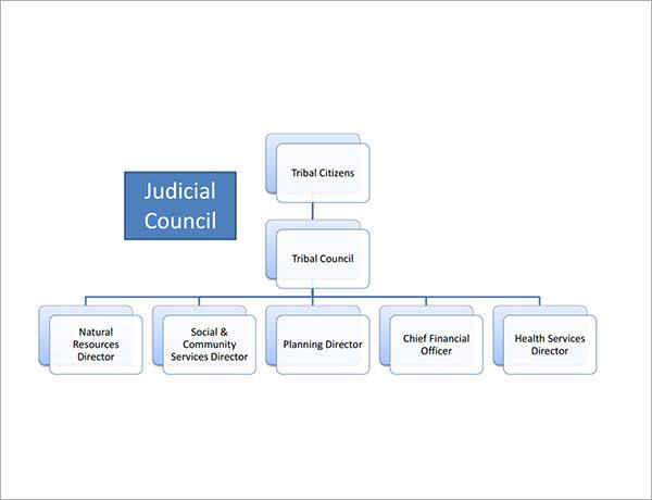 non profit organizational chart - Wwwrule-of-law