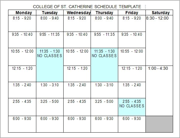 6+ Sample College Schedule Templates Sample Templates - class schedule template sample