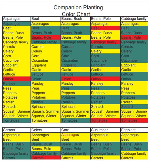 Printable Pdf Companion Planting Chart