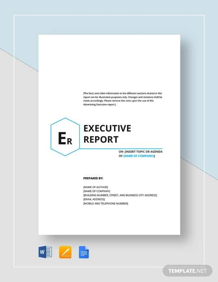 Sample Executive Report - 10 + Documents in Word, PDF, Word, Google