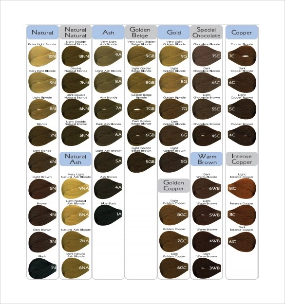 9+ Sample Hair Color Charts Sample Templates - hair color chart