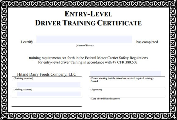 Sample Training Certificate Template - 25+ Documents In Psd, Pdf