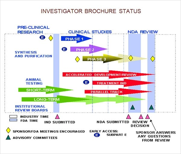 8+ Investigator Brochures Sample Templates