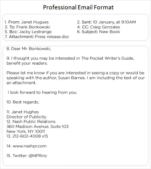 8+ Sample Professional Emails \u2013 PDF Sample Templates