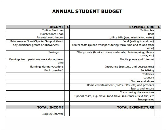 8+ Sample Annual Budget Templates - Word, PDF, Excel