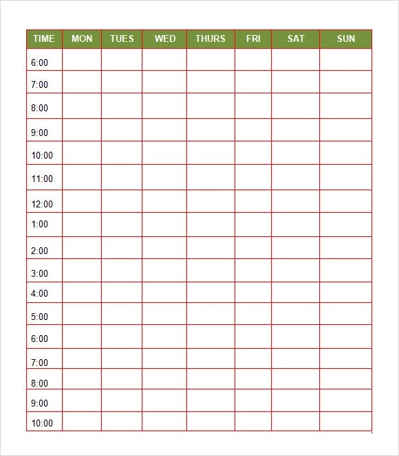 8+ Daily Itinerary Samples Sample Templates - daily planner sample