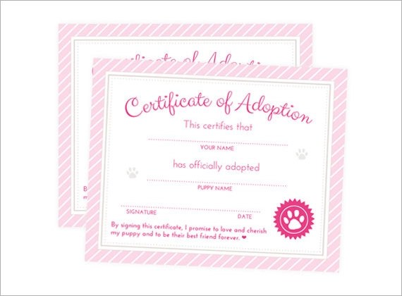 Top Result 60 Awesome Blank Adoption Certificate Template Photos - blank adoption certificate template