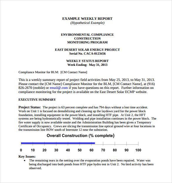 8+ Sample Weekly Status Reports Sample Templates