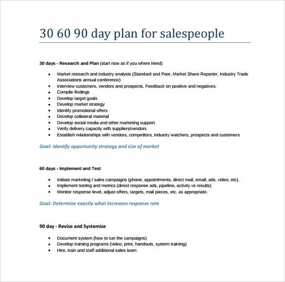 Business plan for sales manager