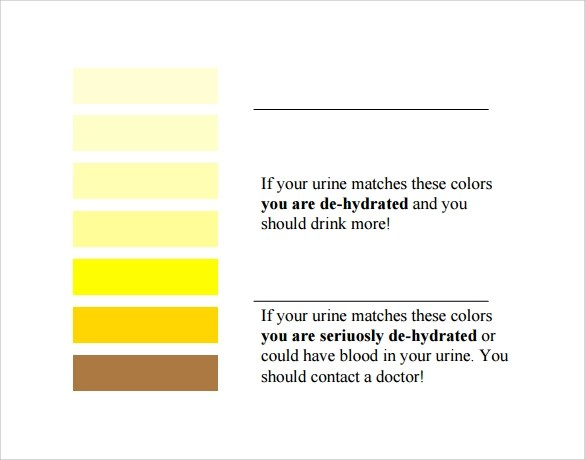Urine-Color-Dehydration-Chart1jpgurine color chart sample download - General Color Chart Template