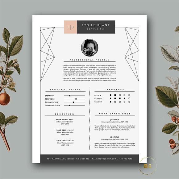 Modern Resume \u2013 9+ Samples , Examples , Format - modern resume layout