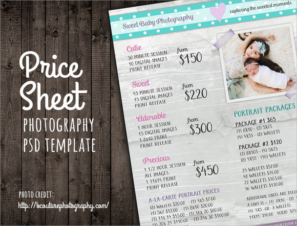 8+ Sample Price Sheets Sample Templates