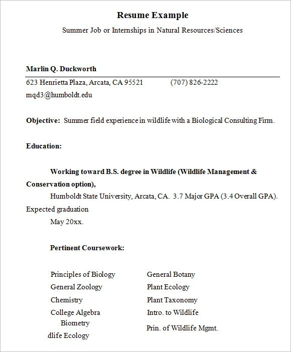 Internship Resume \u2013 9+ Free Samples , Examples , Format